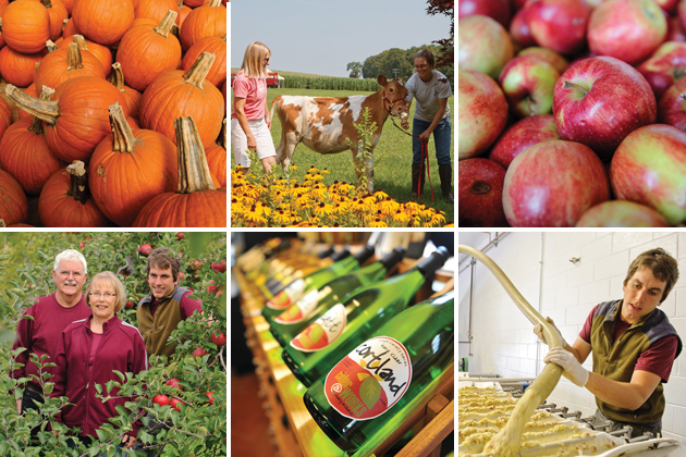 Photo collage representing Growing the Farm Economy in Connecticut