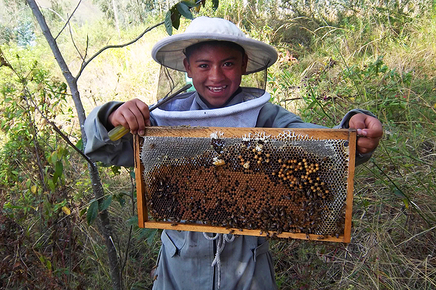 Elizabeth Clark is a Peace Corps volunteer who is establishing a beekeeping cooperative in Ecuador.