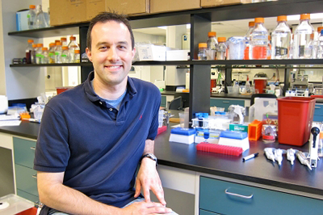 Ken Campellone, assistant professor of molecular and cell biology in the College of Liberal Arts and Sciences, in his laboratory in Beach Hall. (Christine Buckley/UConn Photo)