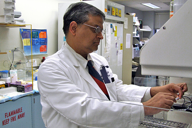 Pramod K. Srivastava, an accomplished leader in basic and translational research and director of the Carole and Ray Neag Comprehensive Cancer Center at UConn Health. (UConn Photo)