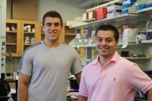 Jason Bennett (l) and Tyler Cappello, both senior molecular and cell biology majors, ahve learned not just about science research, but about responsibility and leadership through their work in Professor Li Wang's laboratory. (Christine Buckley/UConn Photo)