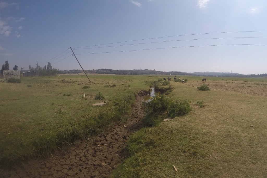 The end of Abba Samual River to the north side of the village. The cracking in the soil indicates that it's almost pure clay, which makes agriculture and irrigation extremely difficult.