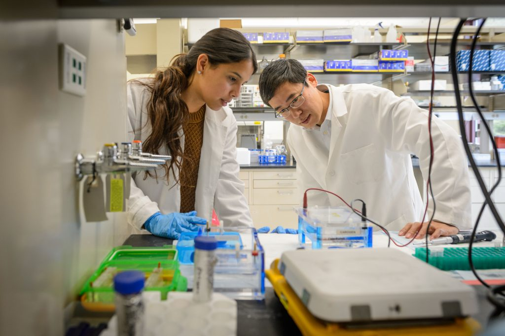 Kepeng Wang, assistant professor of immunology, right, with Kasandra Rodriguez, a research associate at CaroGen Corp.'s technology incubation lab in Farmington on Dec. 12, 2016. (Peter Morenus/UConn Photo)