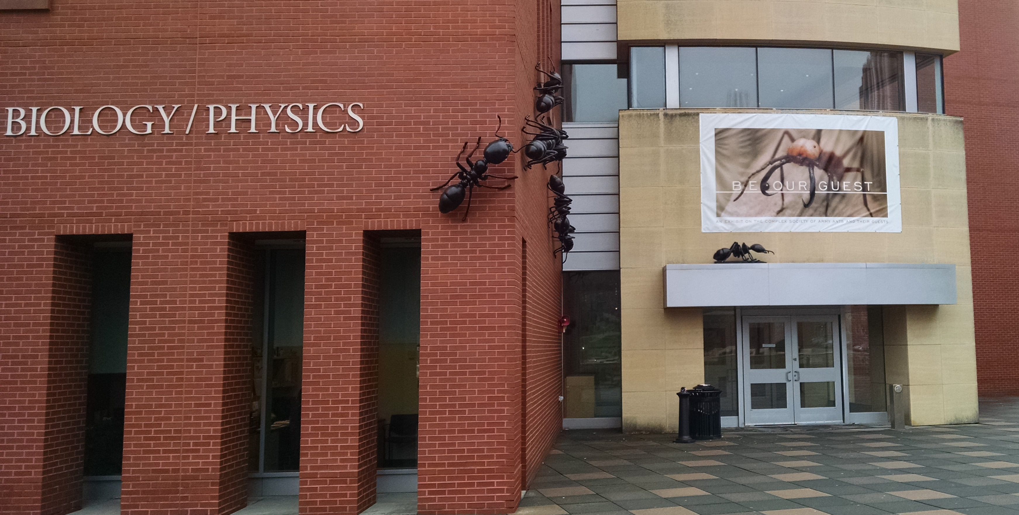The entrance to the Biology/Physics Building. (Ken Best/UConn Photo)