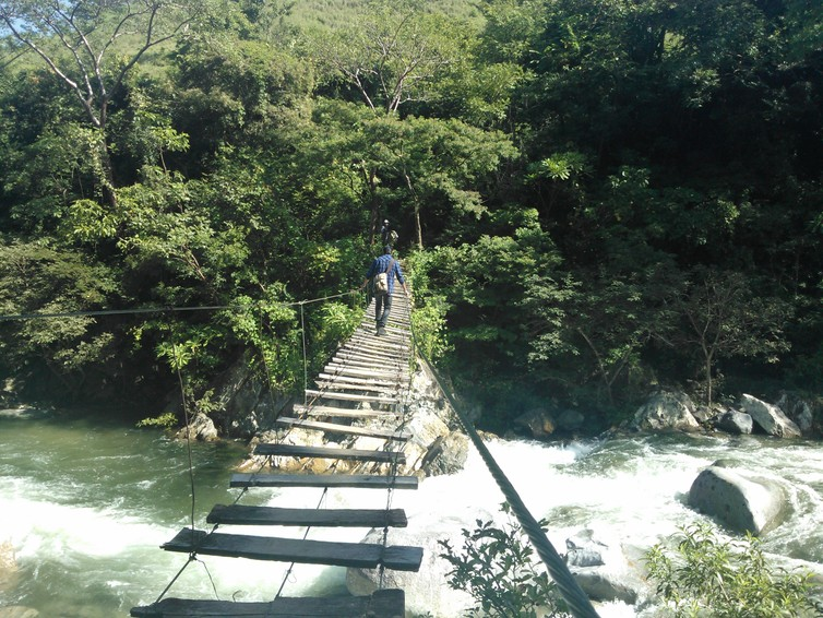 Footbridge over the Coapa River in Chiapas, Mexico, which supports local silvopasture – forestry and livestock grazing. (Lameirasb/Wikipedia, CC BY-SA)