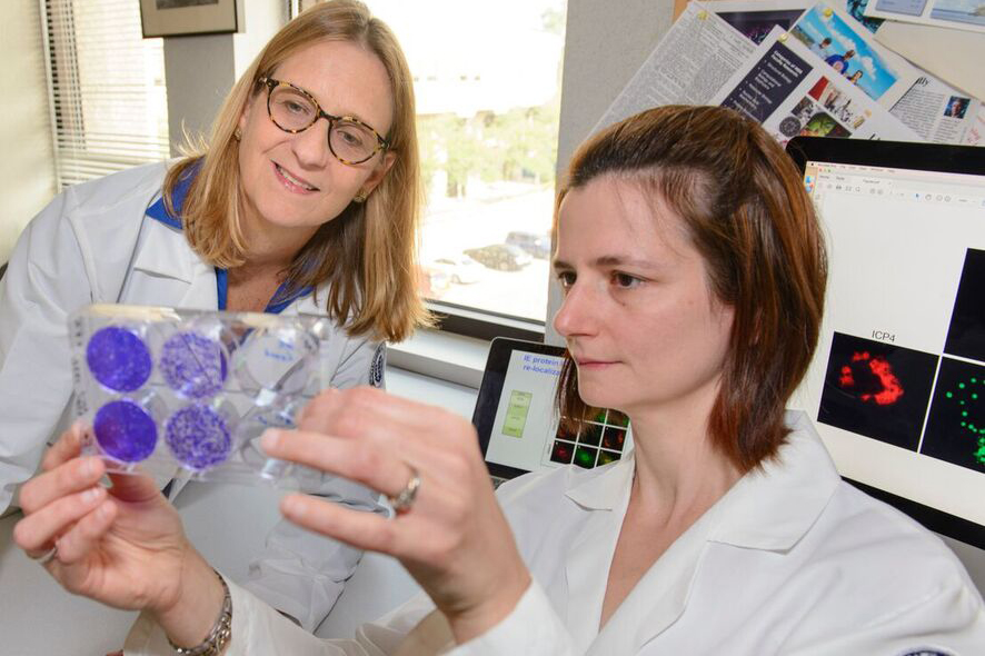 Sandra Weller, left, and postdoctoral fellow Lorry Grady, examine a sample. (Janine Gelineau/UConn Health Photo)