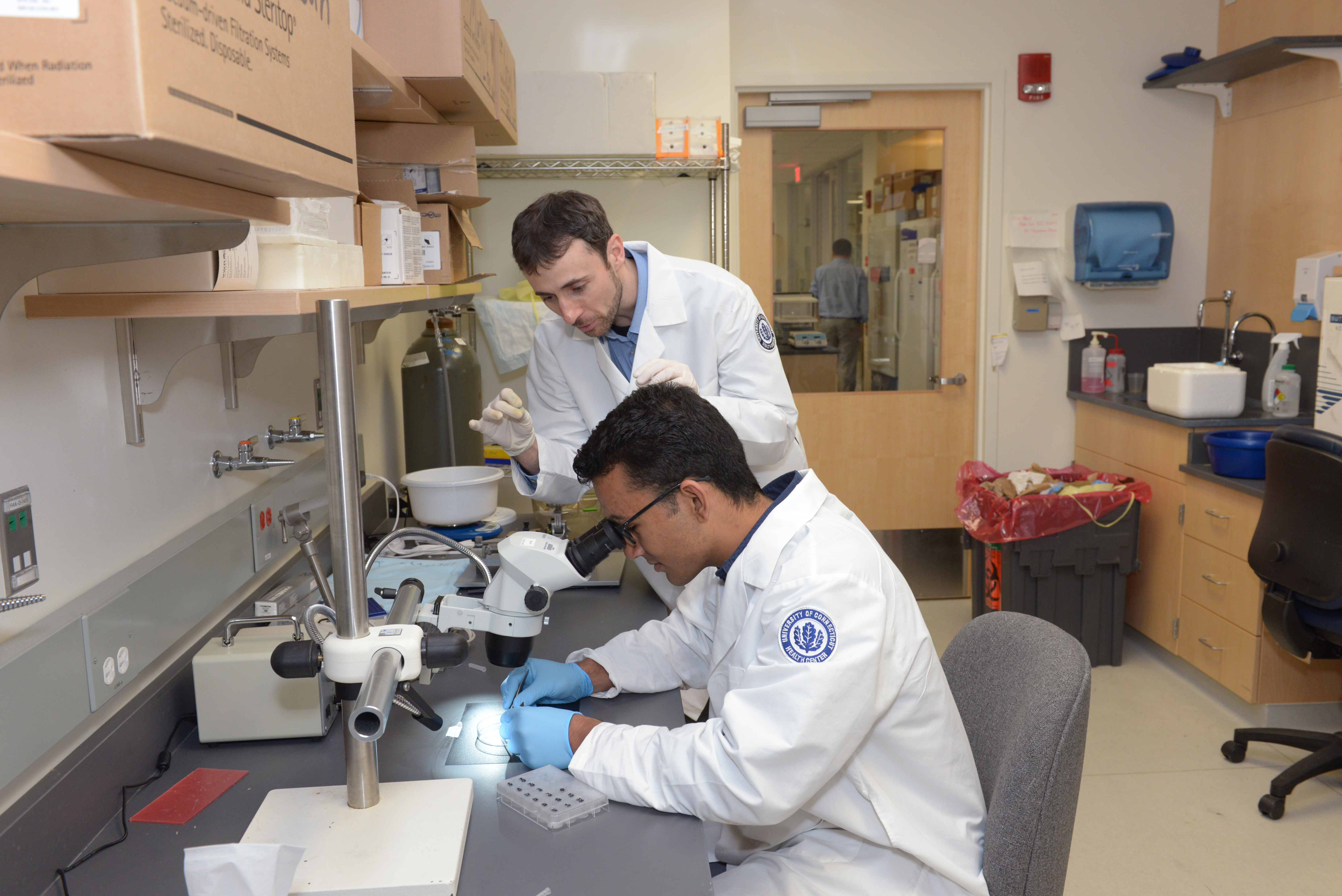 David Martinelli (standing), assistant professor of neuroscience, works with Rohit Makol '20 (ENG), an undergraduate in the UConn Health summer internship program. (Frank Barton/UConn Health Photo)