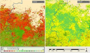 Satellite images of Darfur, Sudan, from 2003 (left) and 2007 show a steady increase in vegetation coverage in former agrarian and livestock grazing areas. This suggests a significant reduction in the number of livestock, which correlates with systematic violence in the region during the same period. Copyright Russell Schimmer, originally published by the Yale Genocide Studies Program