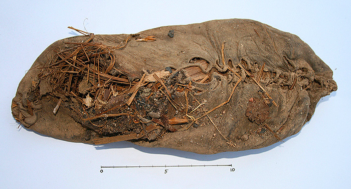 <p>The perfectly preserved 5,500 shoe that was discovered in Armenia, stuffed with grass. Photo supplied by University College Cork</p>
