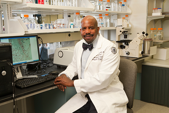<p>Cato T. Laurencin, M.D., Ph.D., Vice President for Health Affairs and Dean of the School of Medicine in his lab at the UConn Health Center. Photo by Lanny Nagler., Vice President for Health Affairs and Dean of the School of Medicine in his lab at the UConn Health Center. Photo by Lanny Nagler.</p>