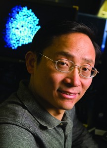 Ren-He Xu, associate professor of genetics and developmental biology. (Al Ferreira/UConn Health Center Photo)