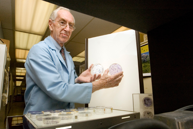 Molecular and cell biology professor Philip Marcus looks at HeLa cell slides from the early 1950s. (Melissa Arbo/UConn Photo