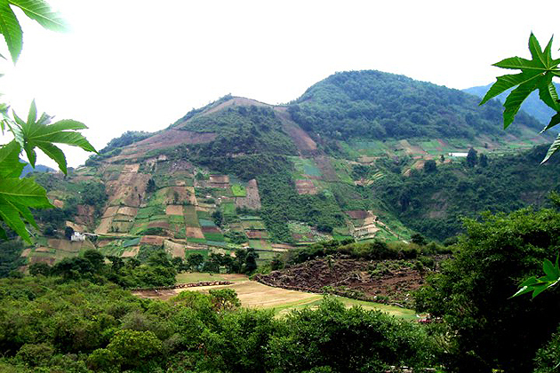 Local residents are desperate to expand the amount of ground that is planted when crop production starts to fail. Planting on steep hillsides contributes to problems of erosion. (Rachael Shenyo/UConn Photo)