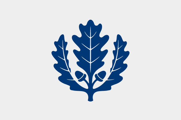 Oak Leaf Gray - UConn Logo
