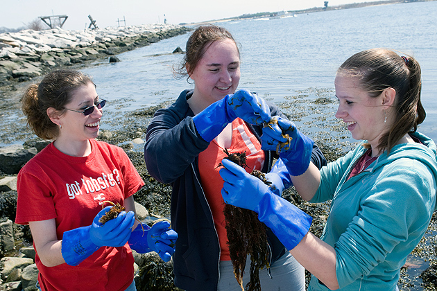 Students working outside in a science/lab class at the Avery Point campus. (Al Ferreira for UConn)