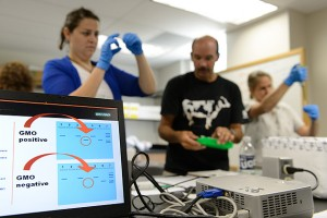 Connecticut high school teachers use DNA analysis to investigate whether food contains GMO modified soy products on June 28, 2012. (Peter Morenus/UConn Photo)
