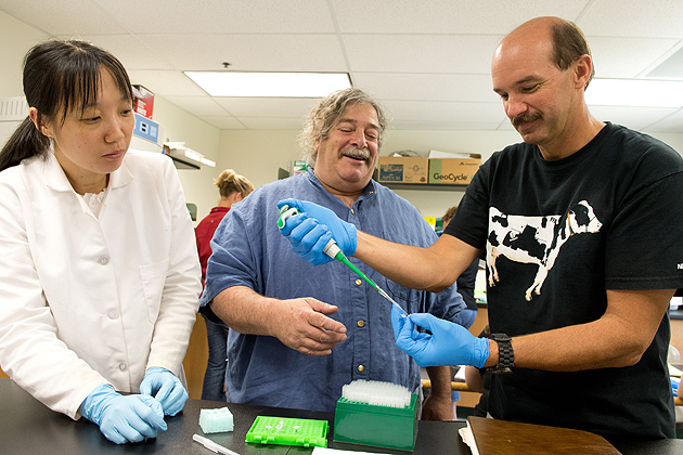 Bill Davenport '85 (CANR), '86 MS, right, a teacher at Nonnewaugh High School in Woodbury, gets some advice on using a micropipette from Yi Ma, left, a post-doctoral fellow, and Gerald Berkowitz, professor of plant science and landscape architecture on June 28, 2012. (Peter Morenus/UConn Photo)