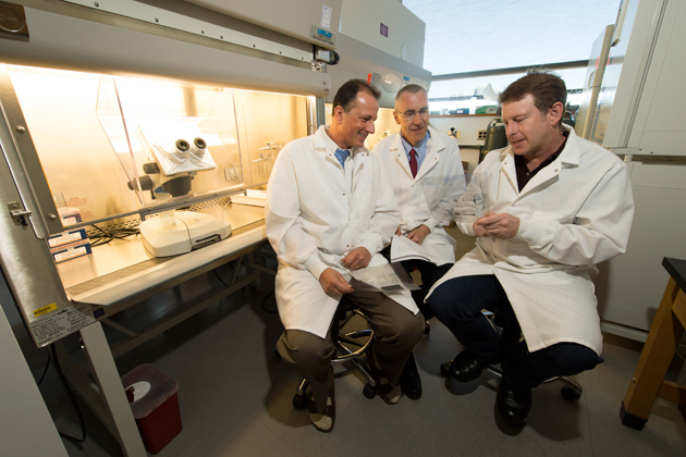 Winfried Krueger, left, Urs Boelsterli, and Theodore Rasmussen in a stem cell research lab at the Physics/Biology Building on Aug.29, 2012. (Peter Morenus/UConn Photo)