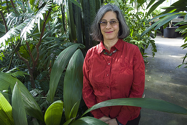 Robin Chazdon, professor of ecology and evolutionary biology, in the EEB greenhouse on campus.