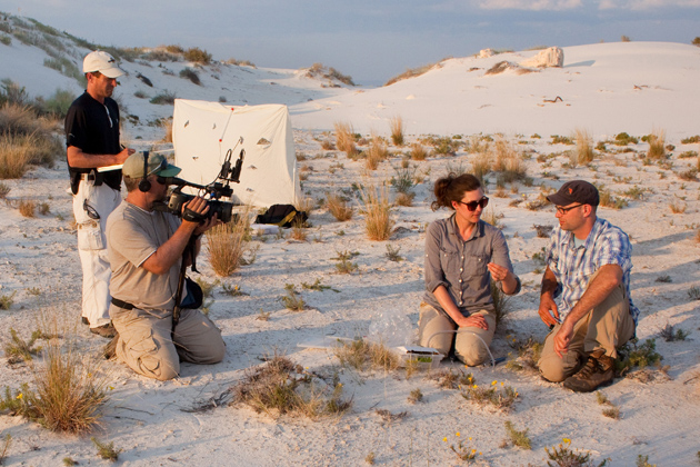 "Christopher Martine '06 Ph.D., far right, the host and creator of the YouTube web series ""Plants Are Cool, Too!"", gathers with the show's co-producers Tim Kramer, far left, and Paul Frederick, second from left, in the deserts of New Mexico to film the series' latest episode alongside fellow UConn alum Krissa Skogen '08 Ph.D, a conservation scientist at the Chicago Botanic Garden. (Photo by Patrick Alexander)"