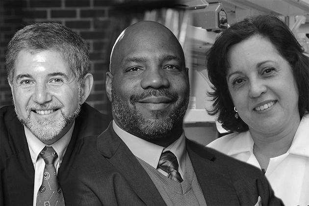 New faculty members Paul Herrnson, Jelani Cobb, and Annabelle Rodriguez-Oquendo are among the senior academics who have joined the University recently.