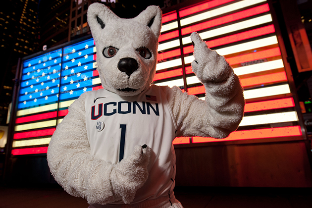 Jonathan the husky visits Times Square while in New York City for the Big East Men's Basketball Championship on March 6, 2012. UConn won 81-67. (Peter Morenus/UConn Photo)