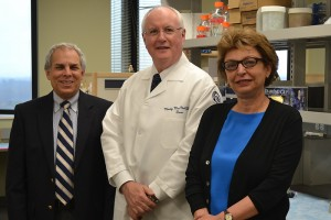 A. Jon Goldberg, Ph.D, R. L. MacNeil, D.D.S., M.Dent.Sc., and Mina Mina, D.M.D., Ph.D. on April 30, 2014. (Sarah Turker/UConn Health Photo)