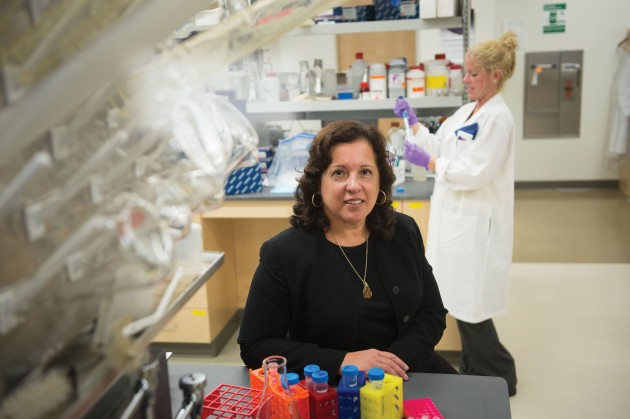 Professor Annabelle Rodriguez-Oquendo, an endocrinologist at UConn Health, is studying genetic links between cholesterol and heart disease. (Peter Morenus/UConn Photo)
