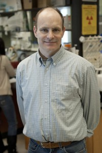 David Goldhamer, professor of molecular and cell biology and associate director of UConn's Stem Cell Institute, in his laboratory at Storrs. (Dan Buttrey/UConn File Photo)