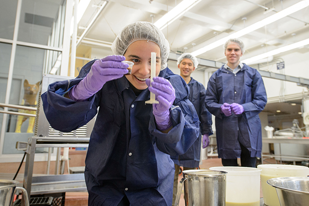 Leonora Yokubinas '15 (ENG) measures vanilla extract for flavoring a test batch of reduced sugar ice cream at the UConn Creamery on April 8, 2015. (Peter Morenus/UConn Photo)