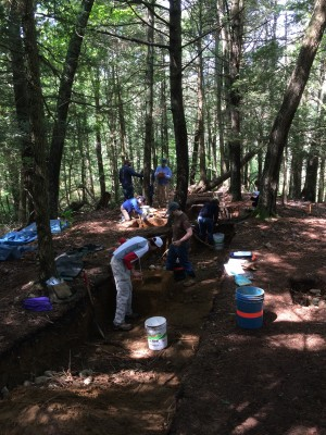 Student participants in the 2015 UConn Archaeology Field School excavate a site at the Mashantucket Pequot Reservation. (Photo courtesy of the Mashantucket Pequot Museum and Research Center)