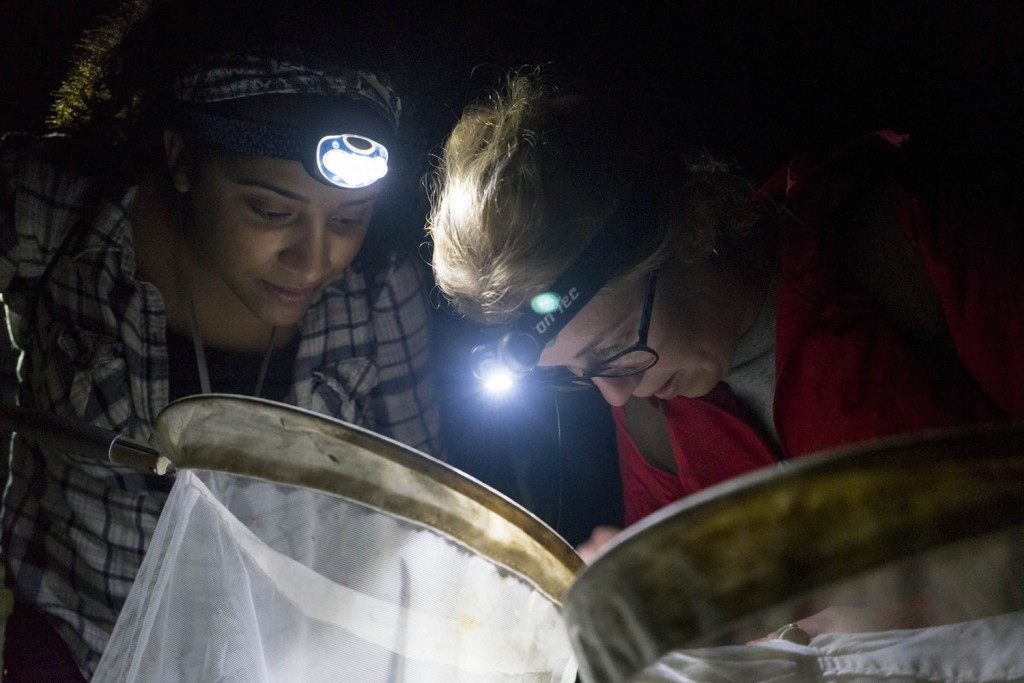 Support the next generation of conservation scientists!