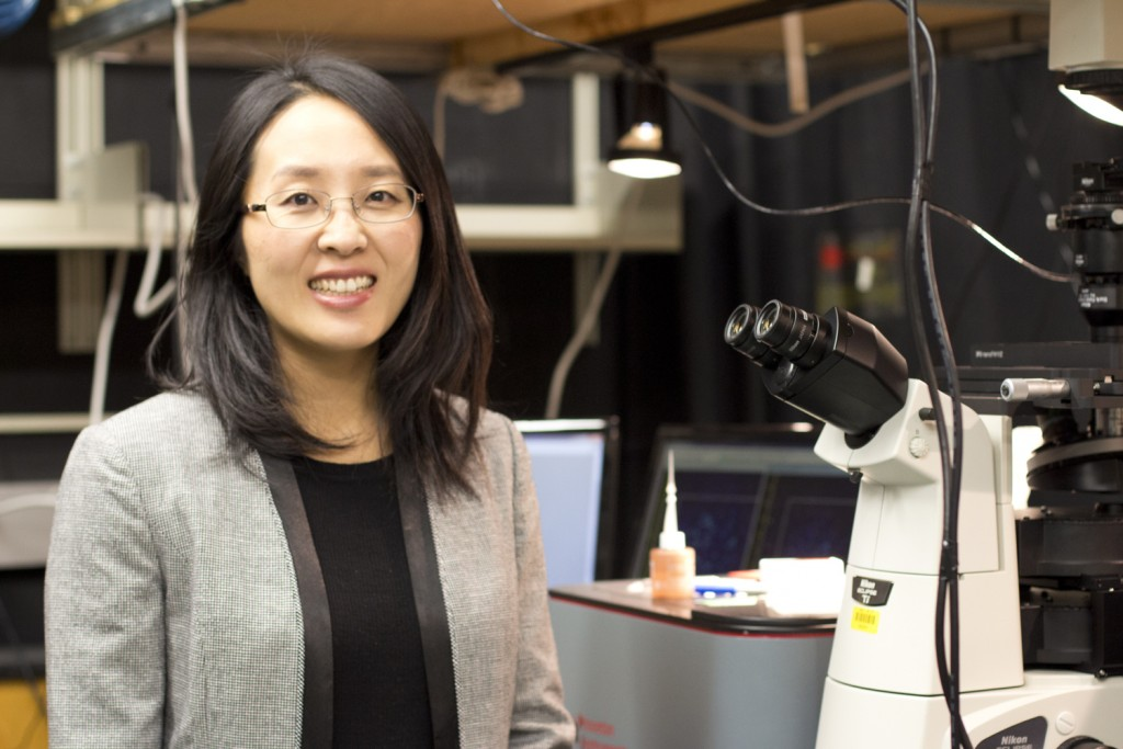 Work by assistant professor of chemistry Jing Zhao will study the creation of novel hybrid metal and semiconductor nanostructures. (Christine Buckley/UConn Photo)