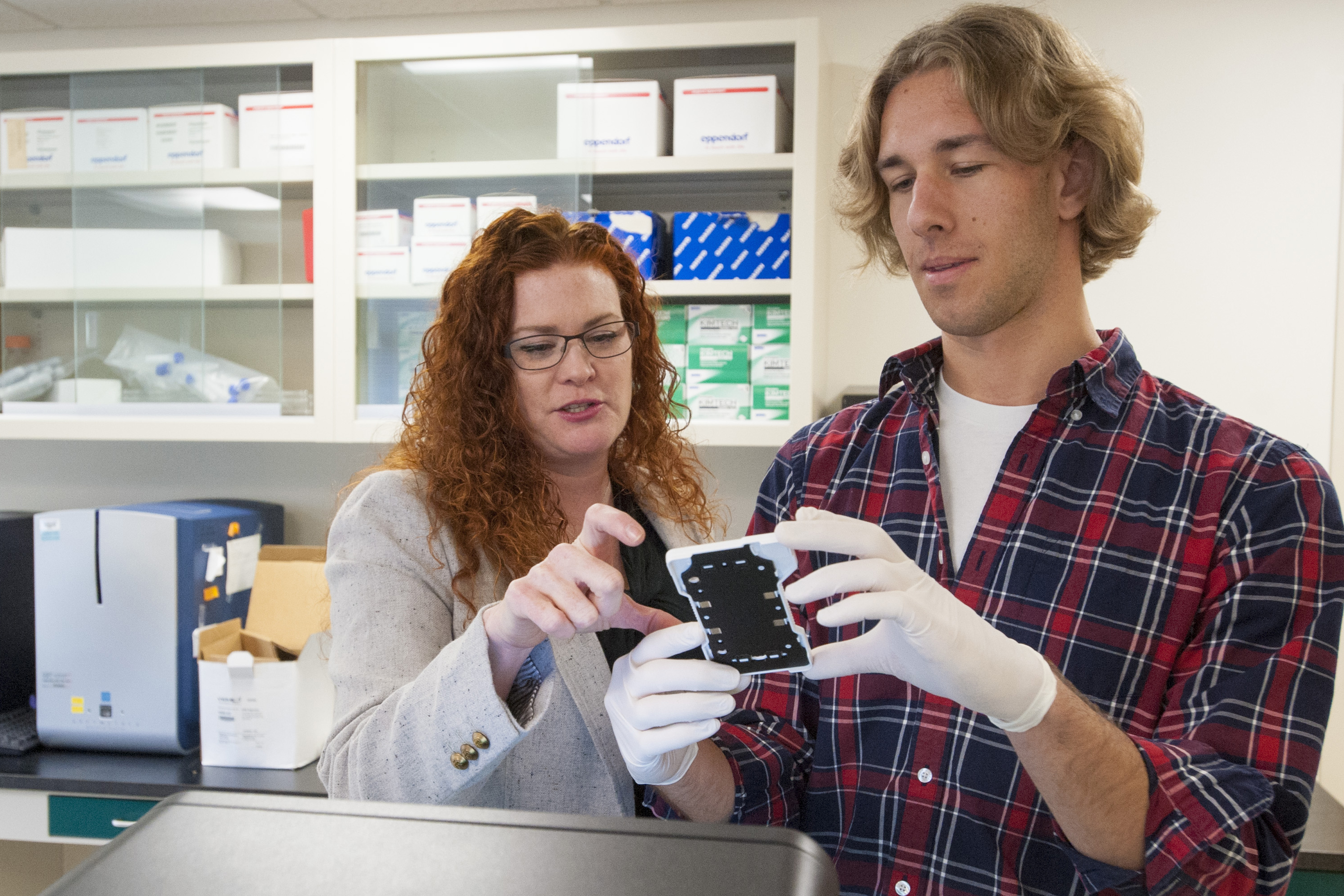 Undergraduate researcher Brendan Smalec in Professor Rachel O'Neill's lab. (Sean Flynn/UConn Photo)