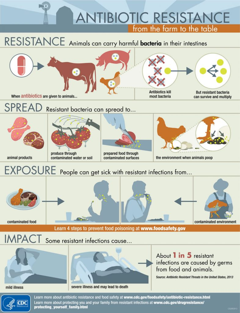 A poster from the Centers for Disease Control showing various methods of transfer of resistant organisms from food-producing animals to humans. (Used with permission from www.cdc.gov)