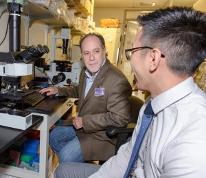 Dan Rosenberg (left) and Allen Mo use a technique called laser capture microdissection to select small groups of cells from a biopsy, which enables them to screen for mutations. (Photo by Janine Gelineau)