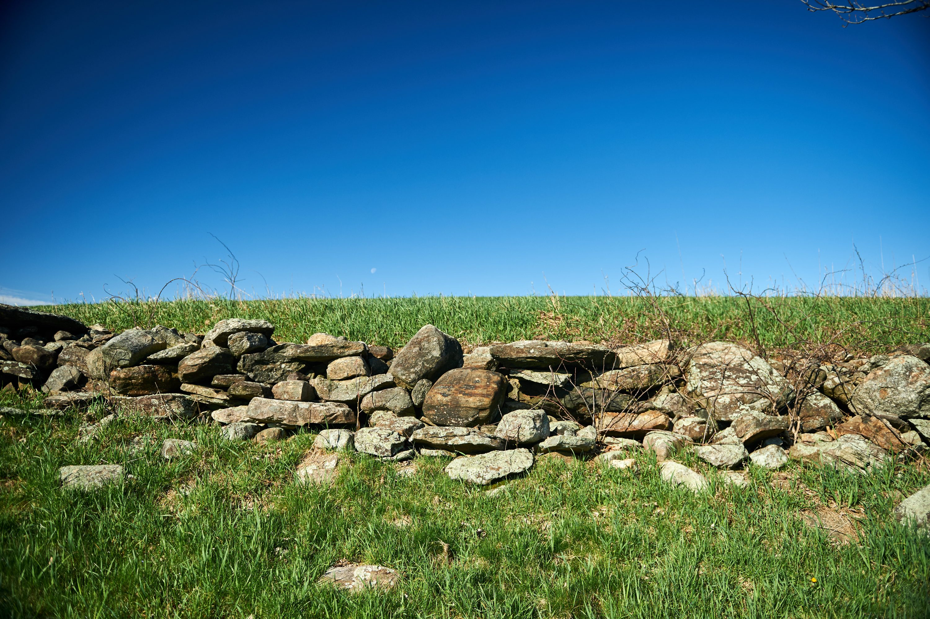 A stone wall near the peak of Horsebarn Hill on April 27, 2016. (Peter Morenus/UConn Photo)