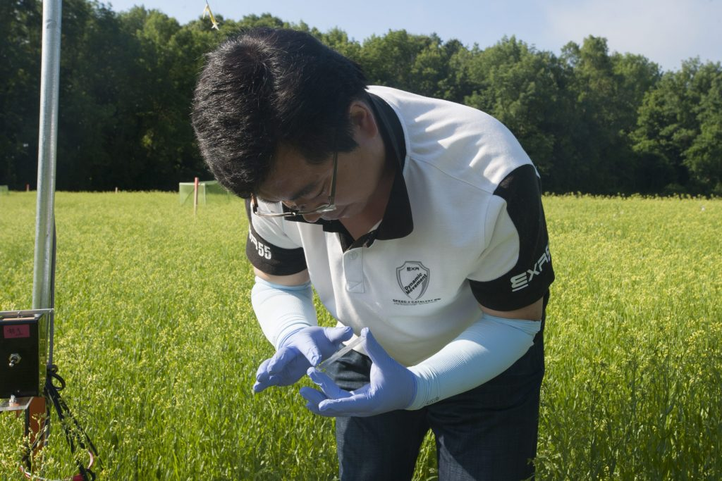 Postdoctoral fellow Chuan-Jie Zhang sets up a pollen collector in a field of Camelina sativa on June 20, 2016. (Sean Flynn/UConn Photo)