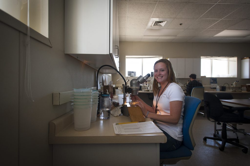 Hannah Casey '18 (CLAS) studies the eggs and larvae of aquatic species in the Millstone Environmental Lab as part of her internship. (Sean Flynn/UConn Photo)
