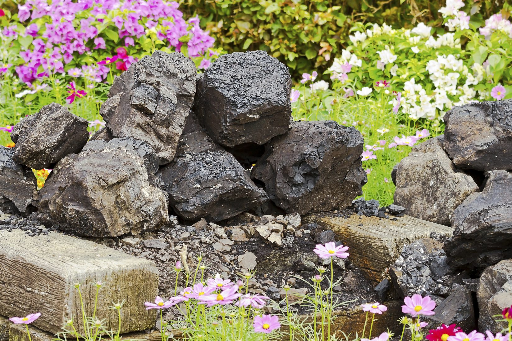 Flowers spring up around a pile of coal. (iStock Photo)