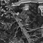 Hurricane_of_1938_ damage_on_campus(1)