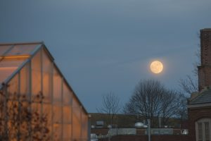 Moon rising over Horsebarn hill on Jan. 11, 2017. (Sean Flynn/UConn Photo)