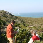 Researchers Ross Turner, Adam Wilson, Cory Merow (l to r) conducting field work at the Cape of Good Hope in South Africa. Stuart Hall also pictured.