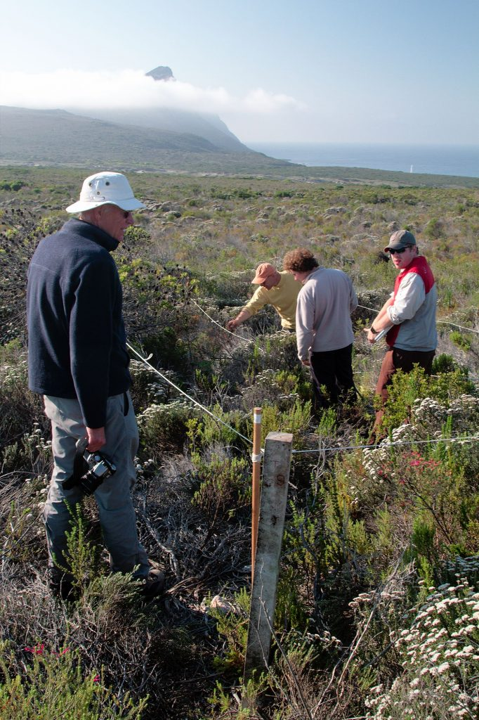 From left, John Silander, Ross Turner, Stuart Hall and Cory Merow facing the Cape of Good Hope while conducting research in the field.