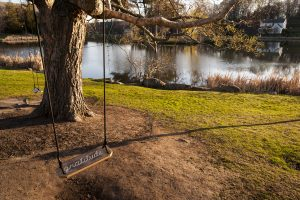 A swing with gratitude carved into the seat at Mirror Lake. (Sean Flynn/UConn Photo)