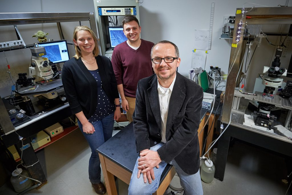 Dan Mulkey, associate professor of physiology and neurobiology, with postdoc Virginia Hawkins and undergraduate Colin Cleary at the Pharmacy/Biology Building. (Peter Morenus/UConn Photo)