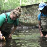 Caitlyn Murphy, left (East Catholic HS), and Naieem Kelly (Watkinson HS) study water quality in the Fenton River during a two-day workshop, part of the NRCA's Conservation Training Partnerships program. Their adult conservation partners are on shore recording data. (NRCA Staff/UConn Photo)