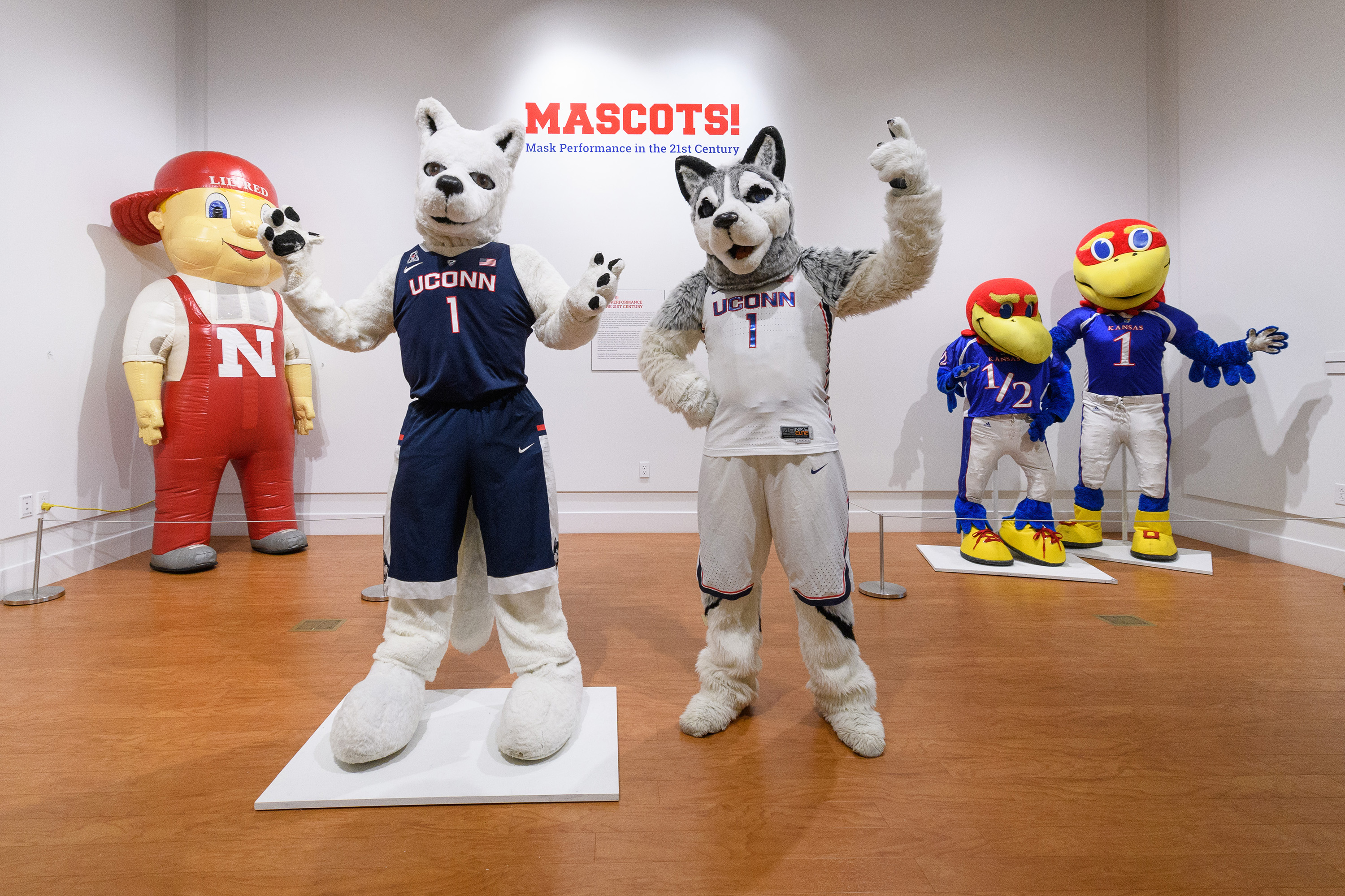 Jonathan the Husky, UConn's current mascot visits the exhibit 'Mascots! Mask Performance in the 21st Century' at the Ballard Institute and Museum of Puppetry on Oct. 30, 2017. (Peter Morenus/UConn Photo)