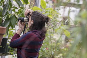 Marissa Aldieri '18 (CLAS), an individualized major, takes photos at the UConn Biodiversity Education and Research Greenhouses.