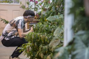 Robert Varszeji '20 (SFA) takes photos at the UConn Biodiversity Education and Research Greenhouses.